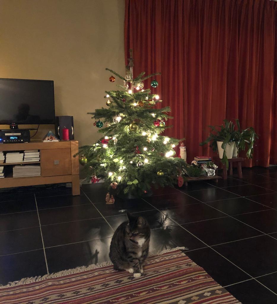 December Sinterklaas Kerstmis Kerstman