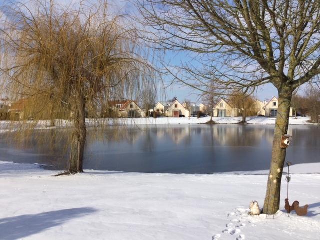 Winter - Een witte wereld